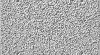 Фасадная штукатурка: защита и украшение дома