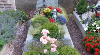 How to make a plant burial sites