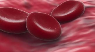 Какая кровь самая редкая