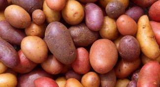 Как хранить картошку на балконе