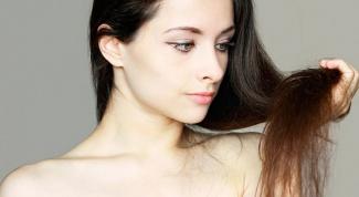 Какие анализы сдавать при выпадении волос