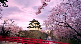 Как можно выучить японский