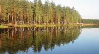 Как добраться до Коркинского озера
