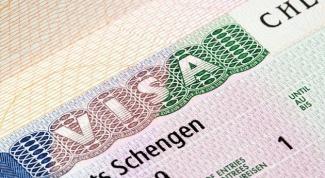 Как заполнять шенгенскую анкету