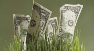 Куда вложить деньги в Белоруссии