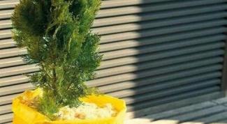 Как украсить балкон зимой