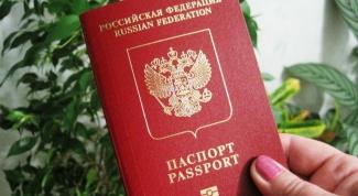 Как узнать ИНН по паспортным данным