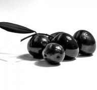 Как купить качественные оливки