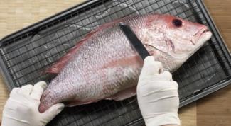 Как правильно почистить любую свежую рыбу