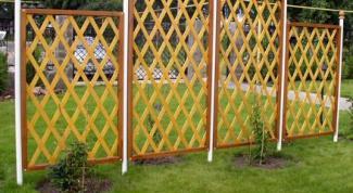 Стенка для вертикального озеленения в саду