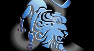 Какие камни подходит Львам