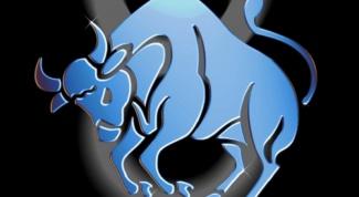What zodiac sign fits Taurus
