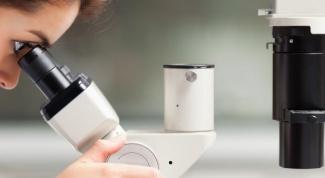 Может ли быть хороший анализ крови при пневмонии или воспалении