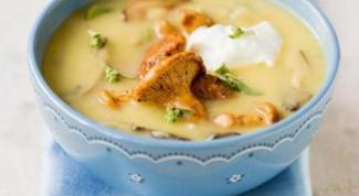 Картофельный суп-пюре с грибами