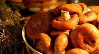 Рецепт соленых рыжиков без уксуса