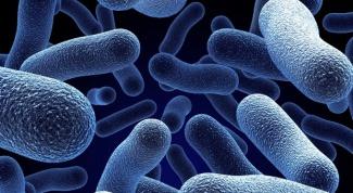Что такое дисбактериоз
