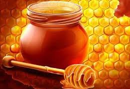 Как нужно хранить мед?