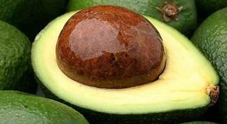 В чем польза авокадо