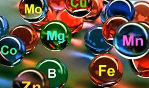 К чему приводит недостаток микроэлементов?