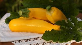 Как заготовить кабачки для прикорма