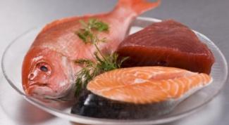 Какие продукты содержат большое количество протеина