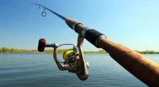 Какую рыбу, где и на что лучше ловить на спиннинг