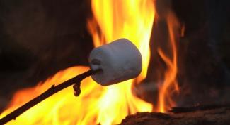 Как пожарить зефир на костре
