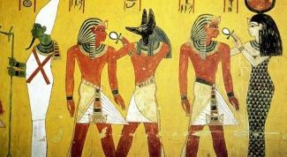 Какие животные олицетворяли богов в Древнем Египте