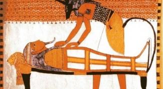 Что означает изображение собаки на египетских сувенирах