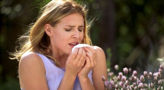 Why allergies itchy eyes and a runny nose appears