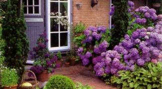 Как называется небольшой огороженный садик перед домом