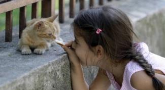 Почему дети любят кормить животных