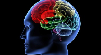 Как развивать мозг