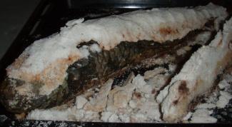 Как просто приготовить рыбу в панцире из соли