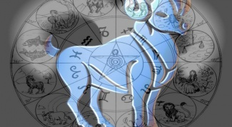 Which zodiac signs fit the Calf