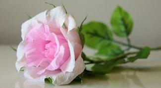 Как сделать розу из конфет