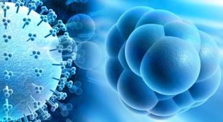 Чем опасен цитомегаловирус