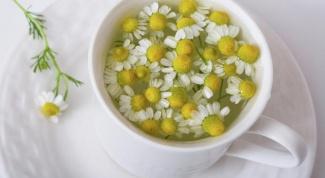 Useful properties of chamomile tea