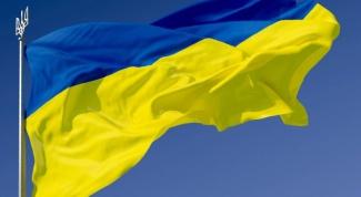 What Ukraine exports