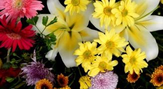 Какие цветы дарить разным знакам зодиака