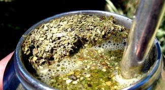 Польза или вред чая мате