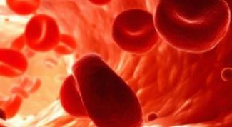 Какие продукты питания разжижают кровь