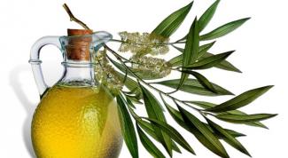 Полезные свойства масла чайного дерева