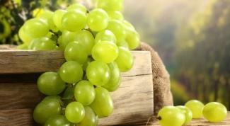 Польза виноградных косточек