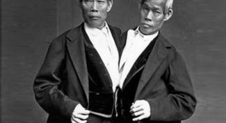 Самые известные сиамские близнецы