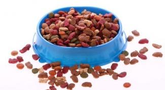 Из чего сделан сухой корм для кошек