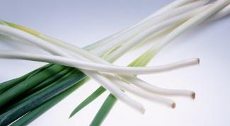 Можно ли замораживать зеленый лук и петрушку