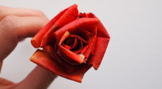 Как сделать розы из осенних кленовых листьев