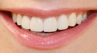 Сколько зубов у человека