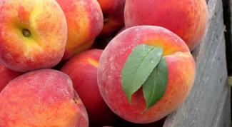 Сколько калорий в персике